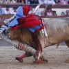 Julio Aparicio GORED IN THROAT During Bullfight