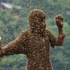 'Bee-Attracting' Competition in Shaoyang, China