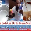What happens when soft drink is poured over Scorpion?