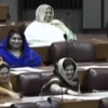 NA standing committee on Human Rights addressed women harassment situation in country