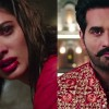 The 'Punjab Nahi Jaungi' teaser is out and emotions are all over the place
