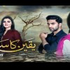 Yakeen Ka Safar Episode 29 Promo on Hum Tv 25 October 2017