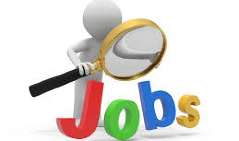 Pak Vacancy – Pakistan Newspapers Job Ads. PJ