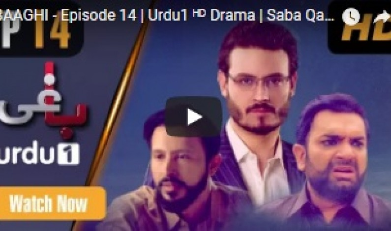 BAAGHI – Episode 14 | Urdu1 ᴴᴰ Drama | Saba Qamar, Osman Khalid, khalid Malik, Ali Kazmi