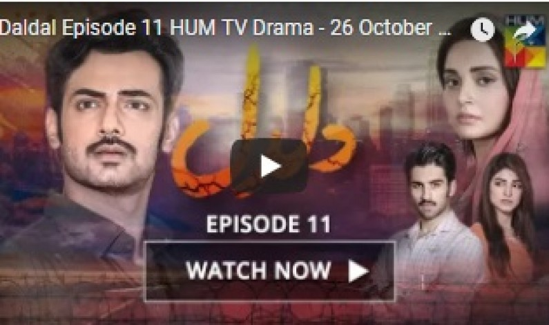 Daldal Episode 11 HUM TV Drama – 26 October 2017