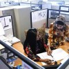10 percent quota for women in public sector employment fixed