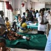 Death toll from south India protests rises to 13