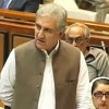 Foreign minister announces to consult Senate for formulation of foreign policy