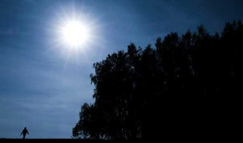 Protecting nature the best way to keep planet cool: report