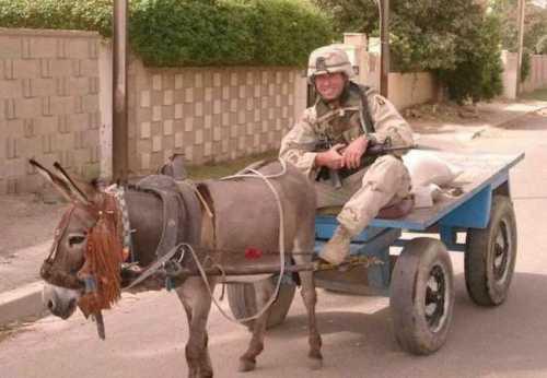 Funny Army 08