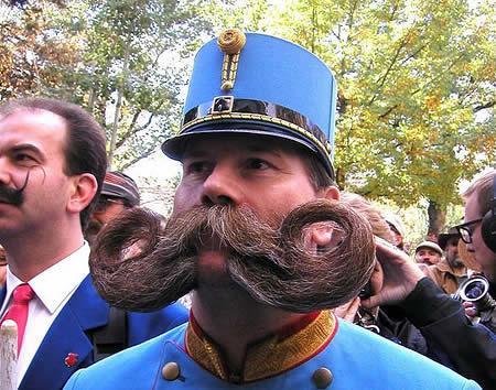 Funny Beards 08
