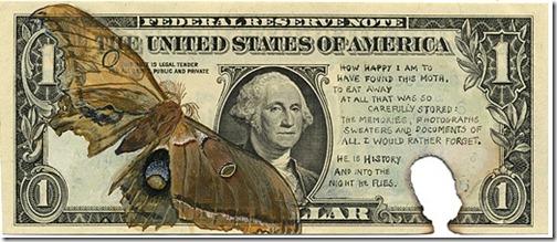 Moth Dollar