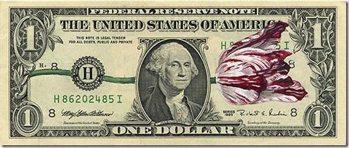 Tulip Dollar