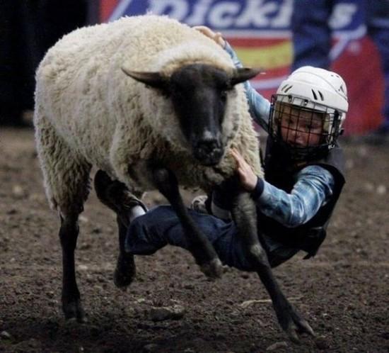 Children Riding Sheep