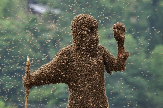 Bee-Attracting