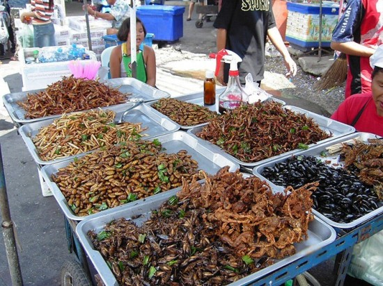 Insects as Food