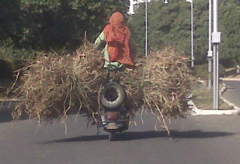 Only in india