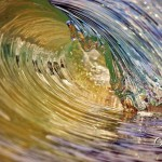 Micro wave deb morris