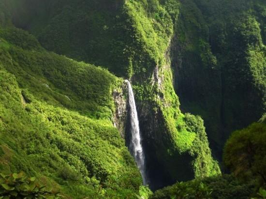The Island of Reunion