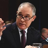 US EPA employees protest Trump's pick to run agency