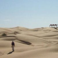 Humans, may, have, transformed, the, Sahara, from, lush, paradise, to, barren, desert