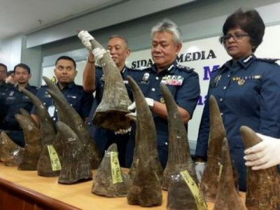Kuala Lumpur International Airport (KLIA) customs director-general Hamzah Sundang (2nd R) poses with rhino horns that were seized on April 7 from Mozambique to Kuala Lumpur via Doha, during a news conference at the airport in Sepang, Malaysia April 10, 2017.