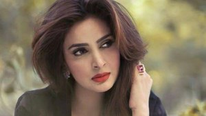 You, can't, judge, someone's, capabilities, based, on, the, language, they, know, shares, Saba Qamar