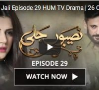 Naseebon, Jali ,Episode, 29, HUM, TV, Drama,  26, October ,2017