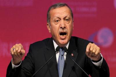 Erdogan says Turkey presses N.Iraq PKK operation